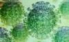 Coronavirus: apoyo a la población (Ecuador)